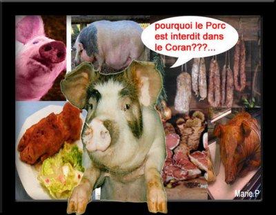 Pourquoi La Viande De Porc Est Interdite Dans L Islam Blog De