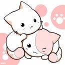 Photo de love---cats