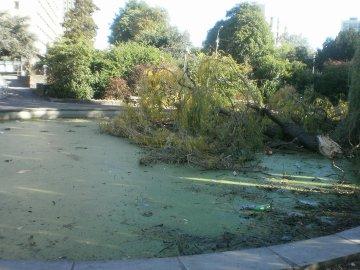 Rafales de vent allant jusqu'à 90 km/h attendues : Bressoux Droixhe demande la fermeture préventive du parc de Droixhe