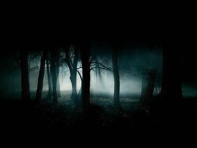 perdu dans lé bois, seule...