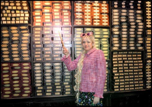 L'univers de Harry Potter... Découvrez la magie!