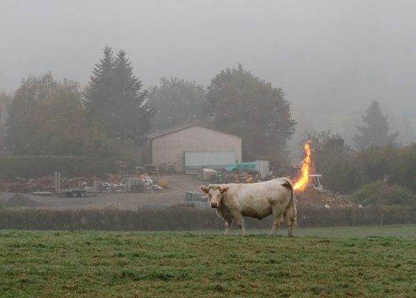 Je pète le feu :)