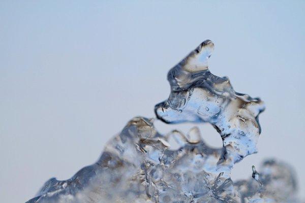 Licorne des glaces
