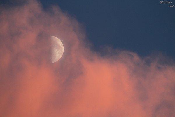 Lune rosée