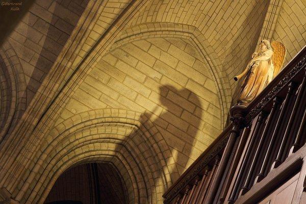 Le sonneur de Notre Dame