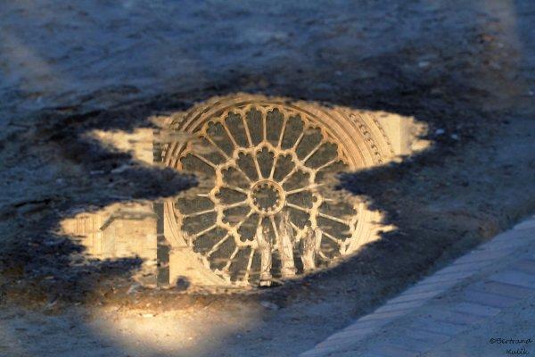 L'oeil de Notre Dame
