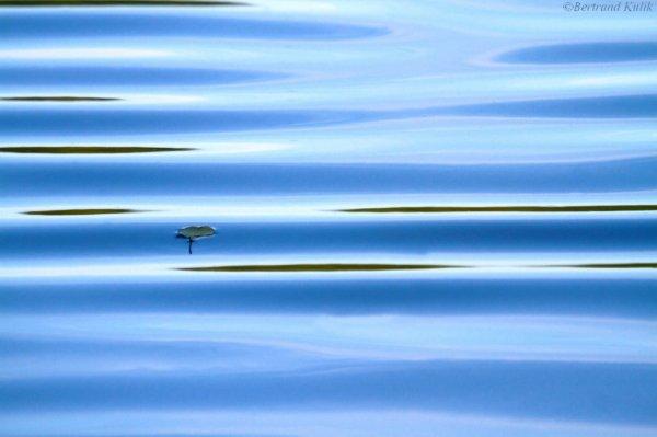 Floating blu