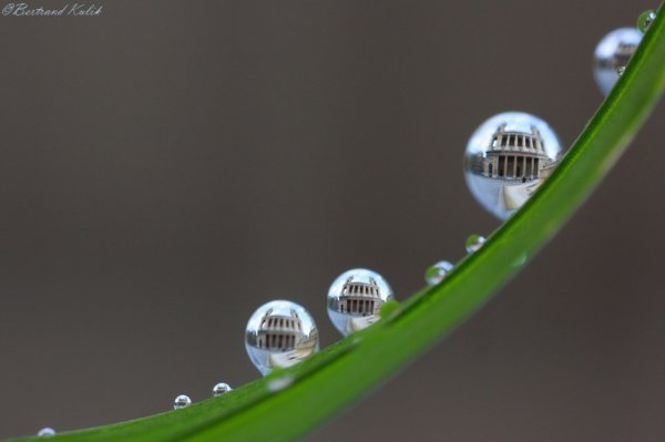 Drops of St Sulpice