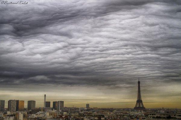 Undulatus sur Paris