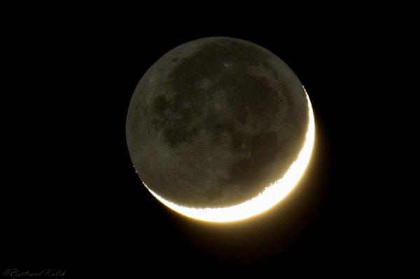 Cendrée lunaire