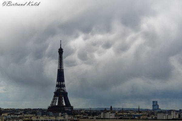Mammatus Parisiens