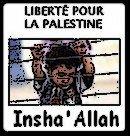 Photo de palestine-free
