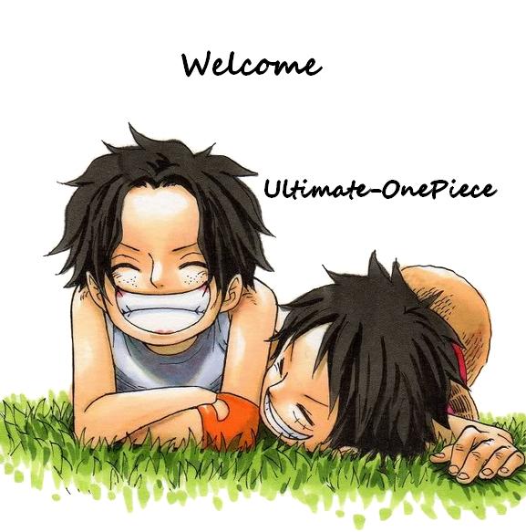 Bienvenue/Welcome/Bienvenida/歓迎