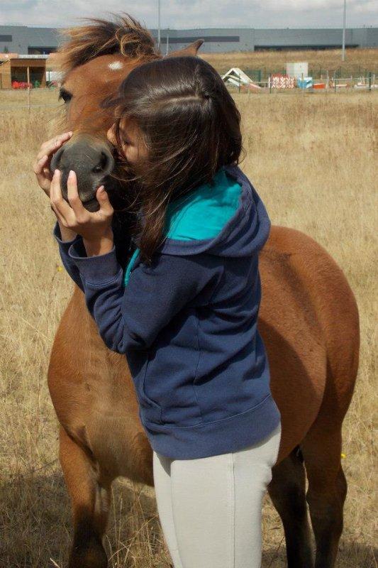 Mes coups de coeur de poney !