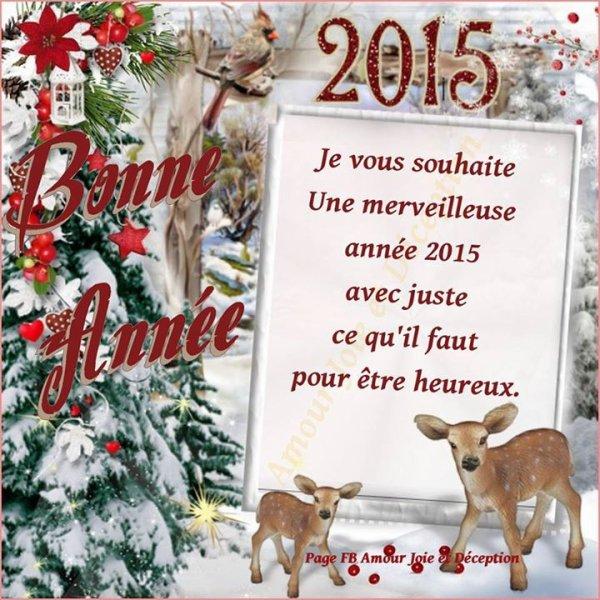 pour vous mes amies(amis) bonnes année a tous bisous