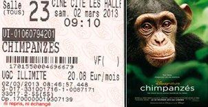 705 –[02-03-2013 : « Chimpanzes »]