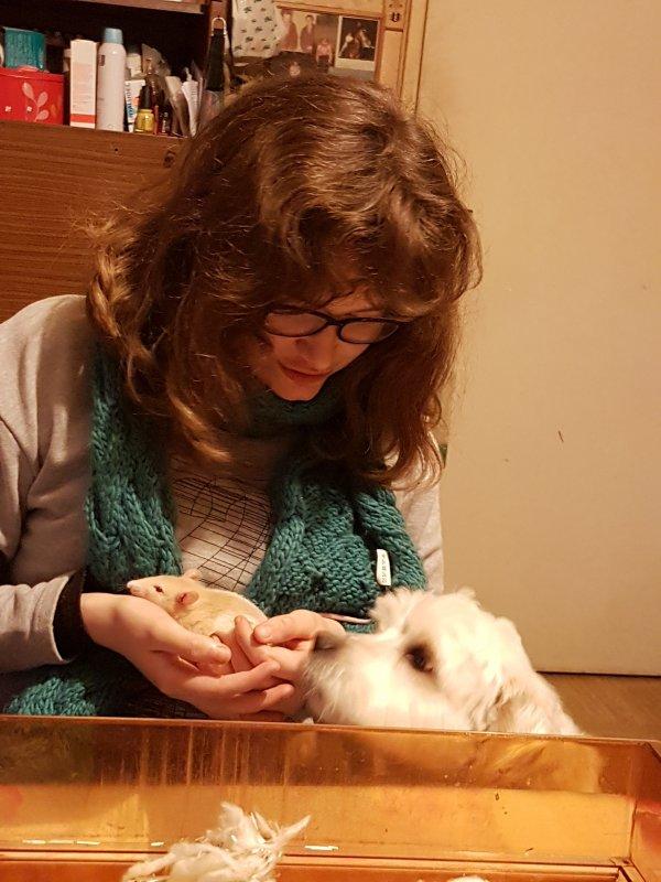 Tatibibi chez la vétérinaire