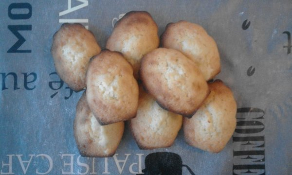 Mes madeleines