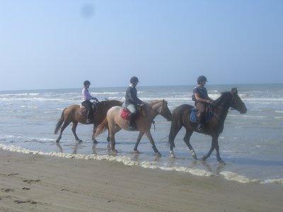 Balade à la plage au moi d'avril