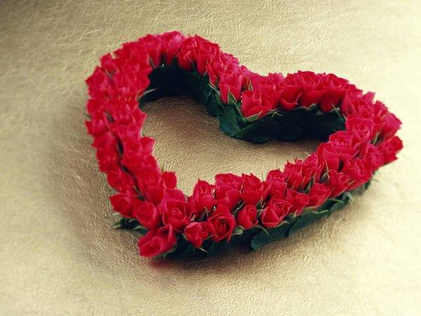 le vrai coeur , le vrai sentiment d'amour vivre pour toi .