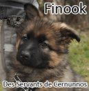 Photo de Finook