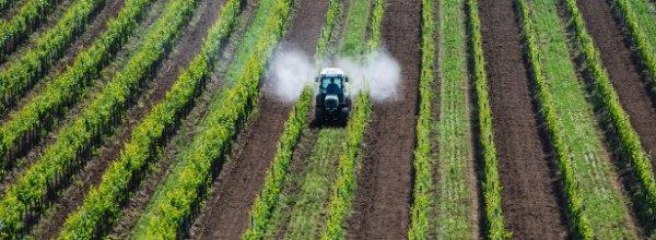 pesticides : elise lucet