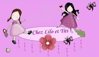 Bienvenue chez Lilo et Titi