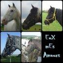 Photo de EuX-mEs-Amours