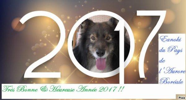 très bonne année 2017 à tous !