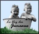 Photo de le-blog-des-jumeaux