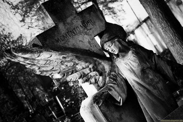 E Se Caso Eu Morrer Amanhã? : Por Igor Douglas de Souza.
