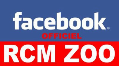 RCM ZOO FACEBOOK OFFICIEL