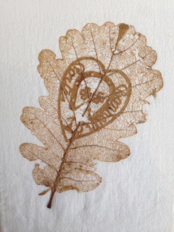 les feuilles dans l'art de tranchée