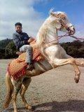 Photo de marwan-maroc