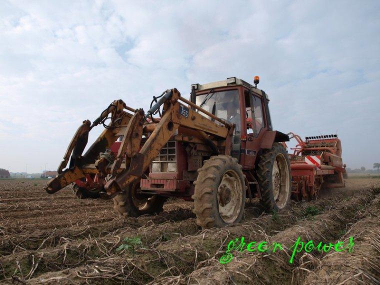 patates 2014 chantier n 4