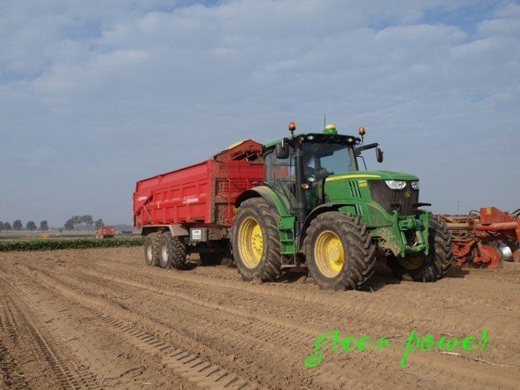 patates 2014 chantier 5
