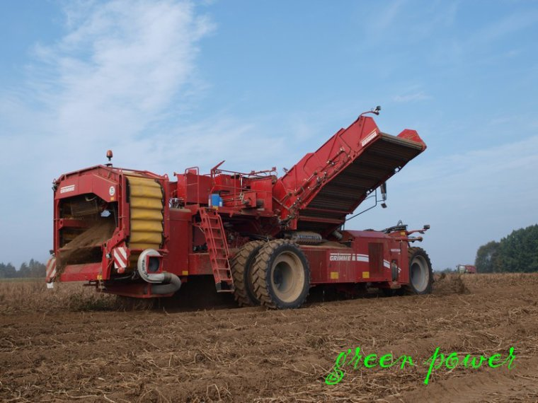 patates 2014 chantier 6