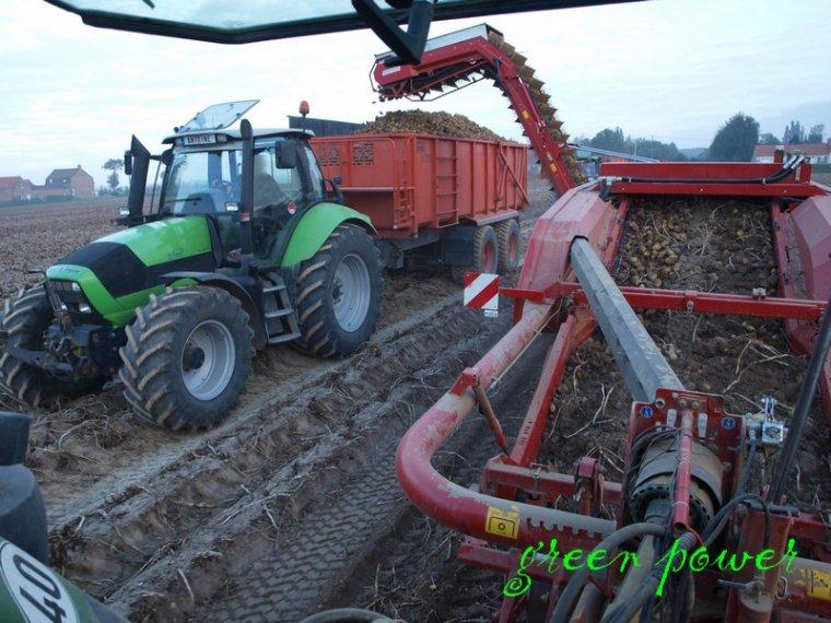 patates 2014 chantier 9