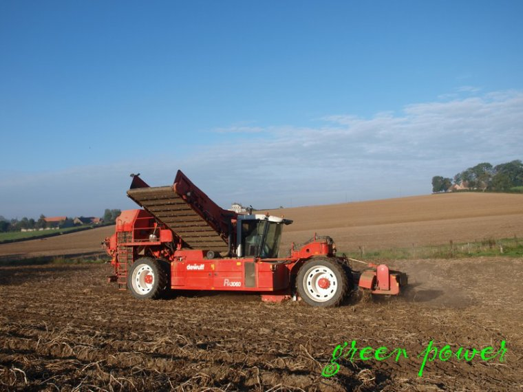 patates 2014 chantier n°9