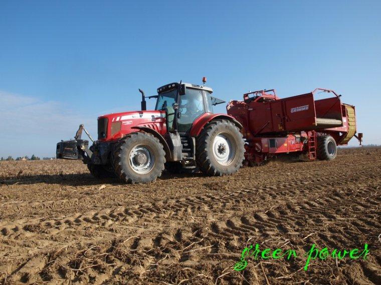 patates 2014 chantier n°11