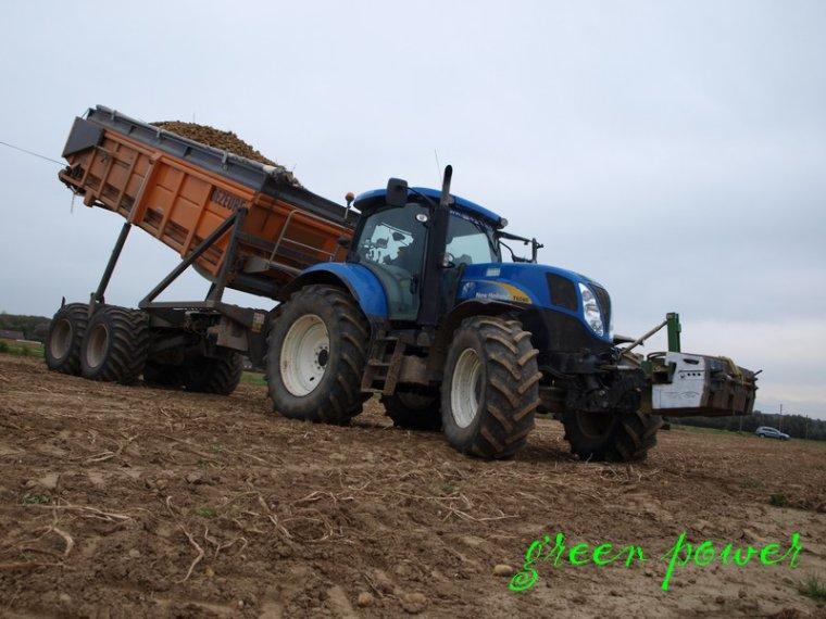 patates 2014 chantier n°13
