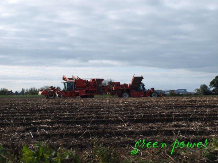 patates 2044 chantier n°15