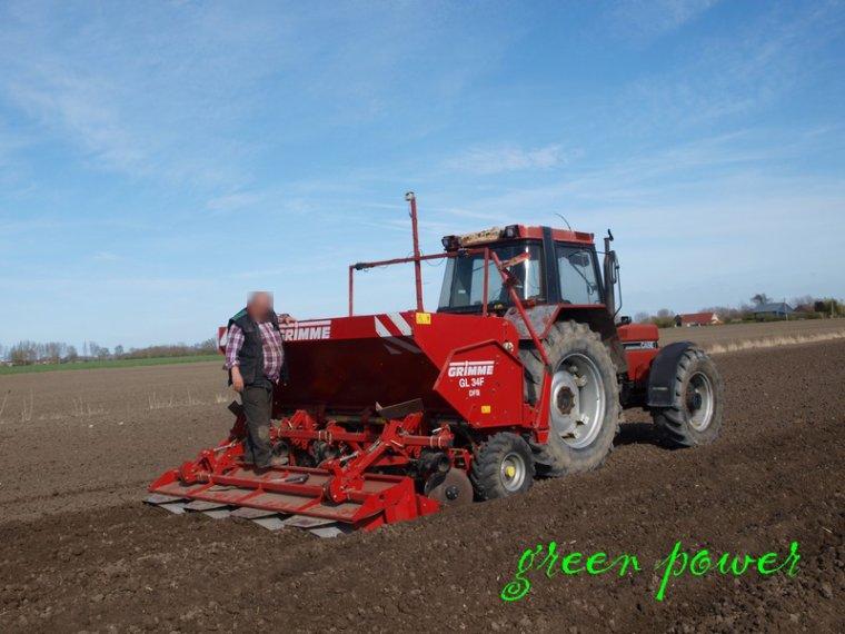 plantation de patates 2015 chantier 6