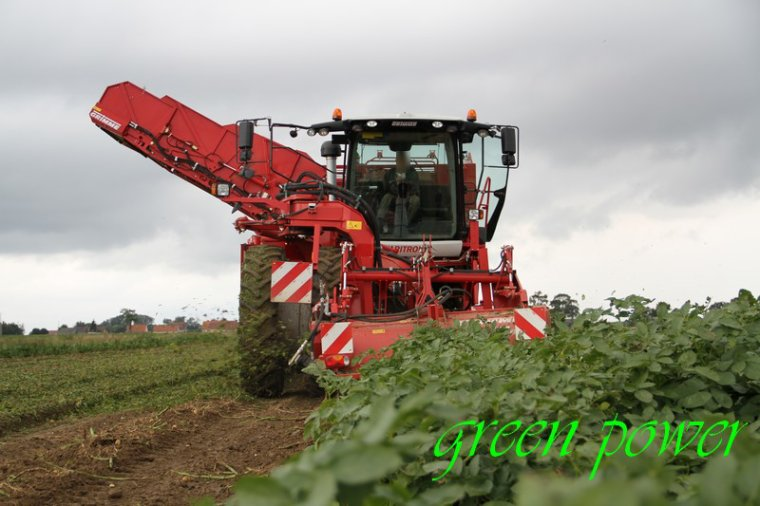 patates 2015 chantier 3
