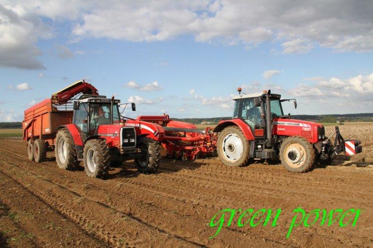patates 2015 chantier 9