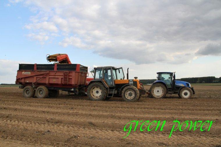patates 2015 chantier 10