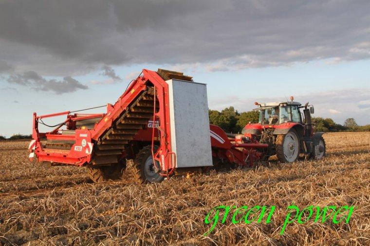 patates 2015 chantier 12
