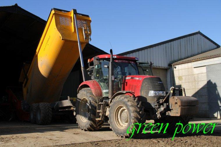 patates 2015 chantier 13