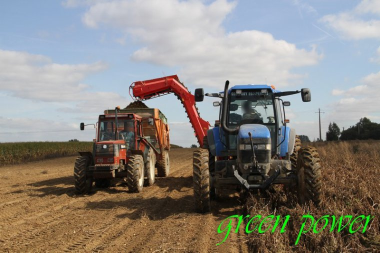 patates 2015 chantier 16