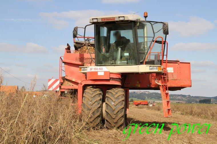 patates 2015 chantier 17